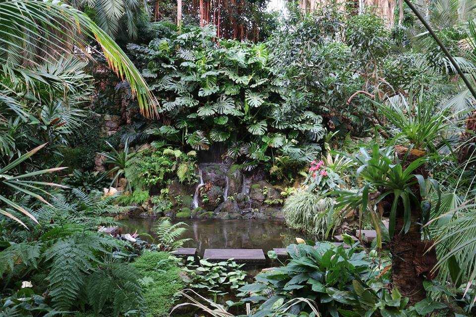 giardino botanico situato nel cuore della città di Francoforte