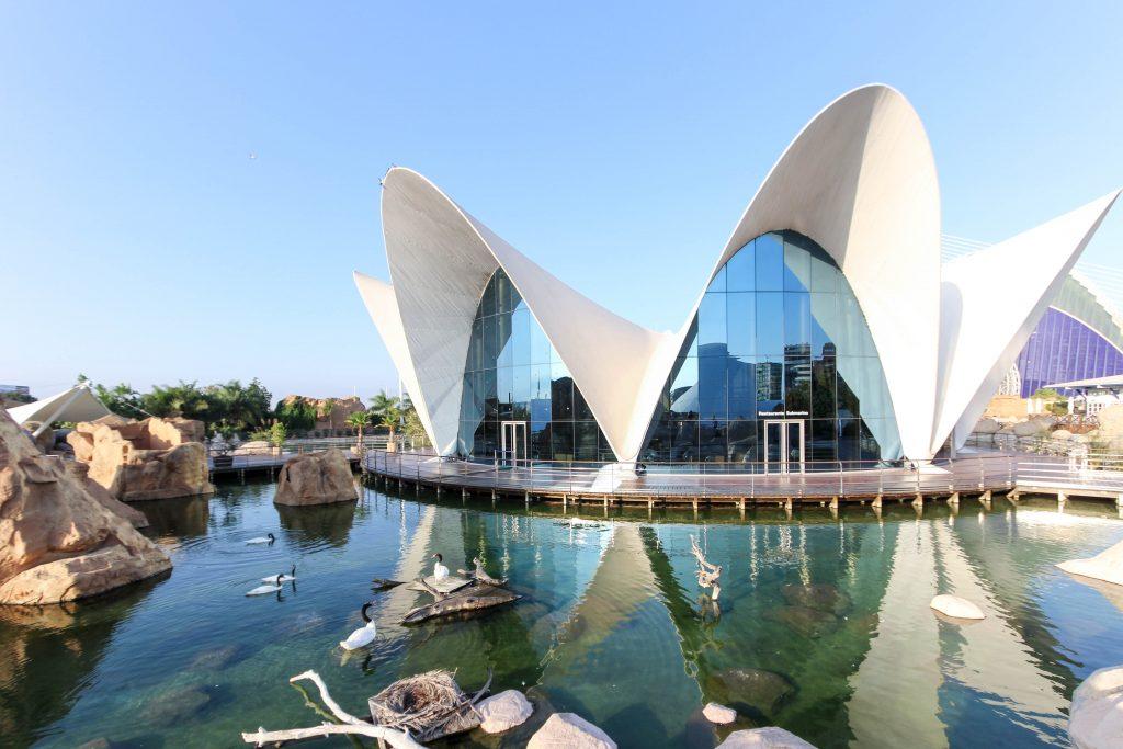 Valencia Oceanografico architettura