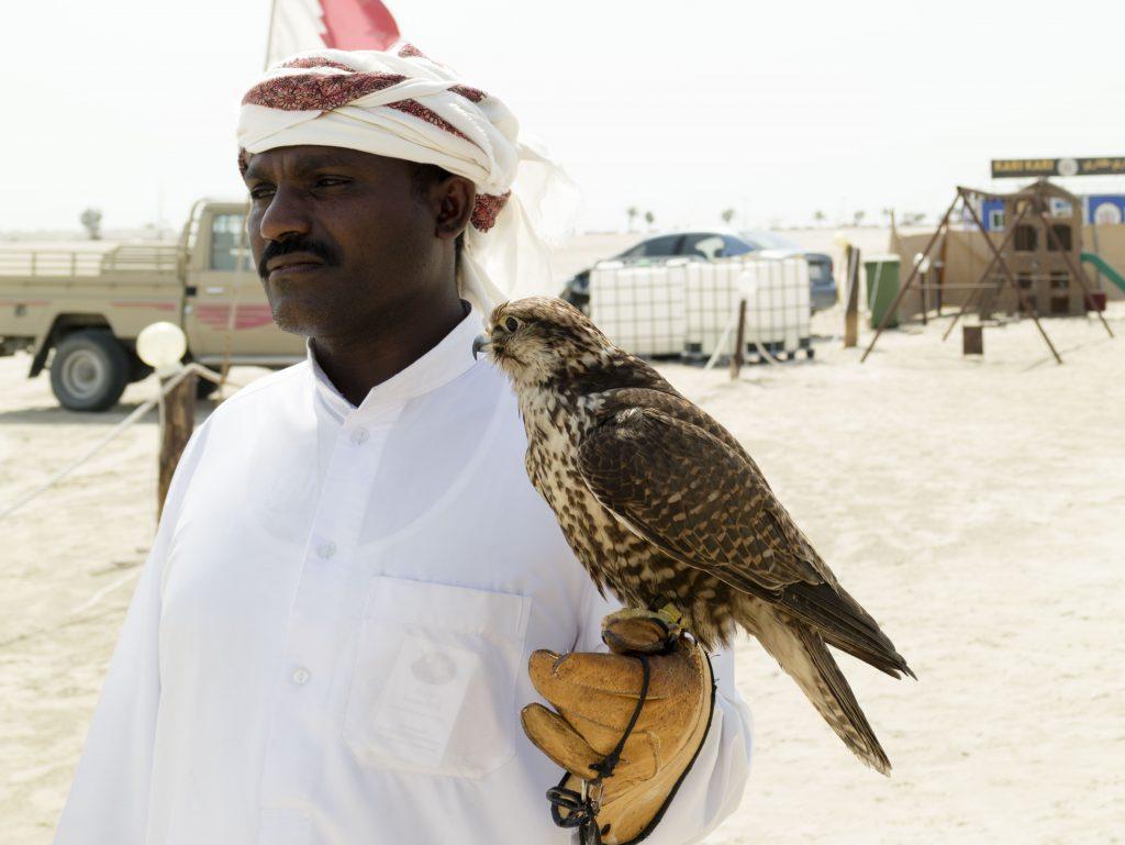 falconeria ESCURSIONE NEL DESERTO Doha - Qatar