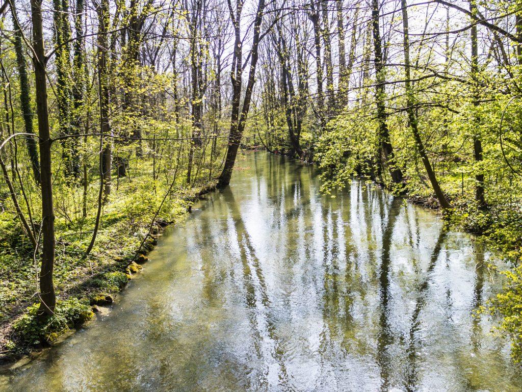 riflessi sul fiume monaco di baviera