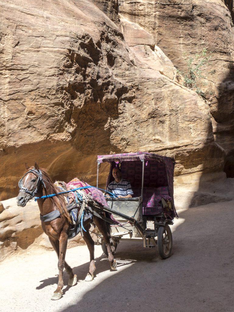 Petra i calessi ed i cavalli