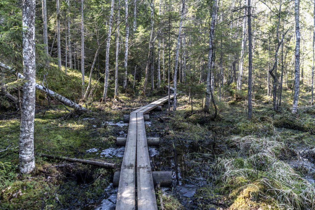 HALTIA – CENTRO NATURALISTICO FINLANDESE HALTIA